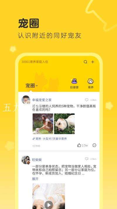 句苗岛app